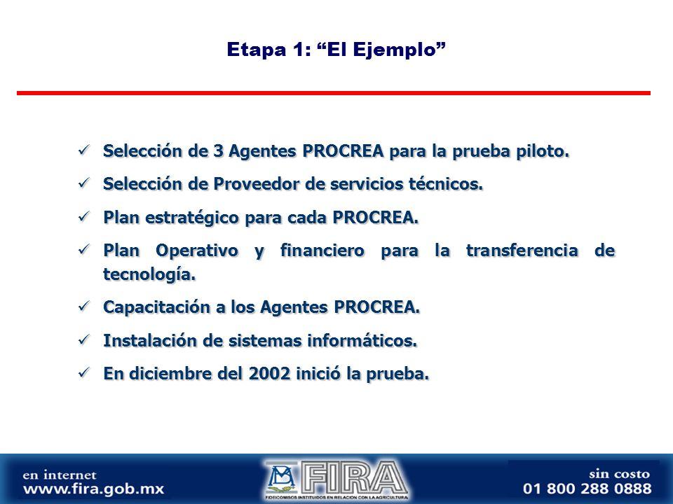 Etapa 1: El Ejemplo Selección de 3 Agentes PROCREA para la prueba piloto.