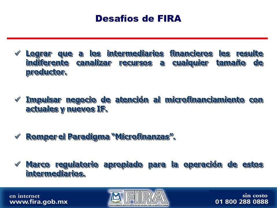 Desafíos de FIRA Lograr que a los intermediarios financieros les resulte indiferente canalizar recursos a cualquier tamaño de productor.