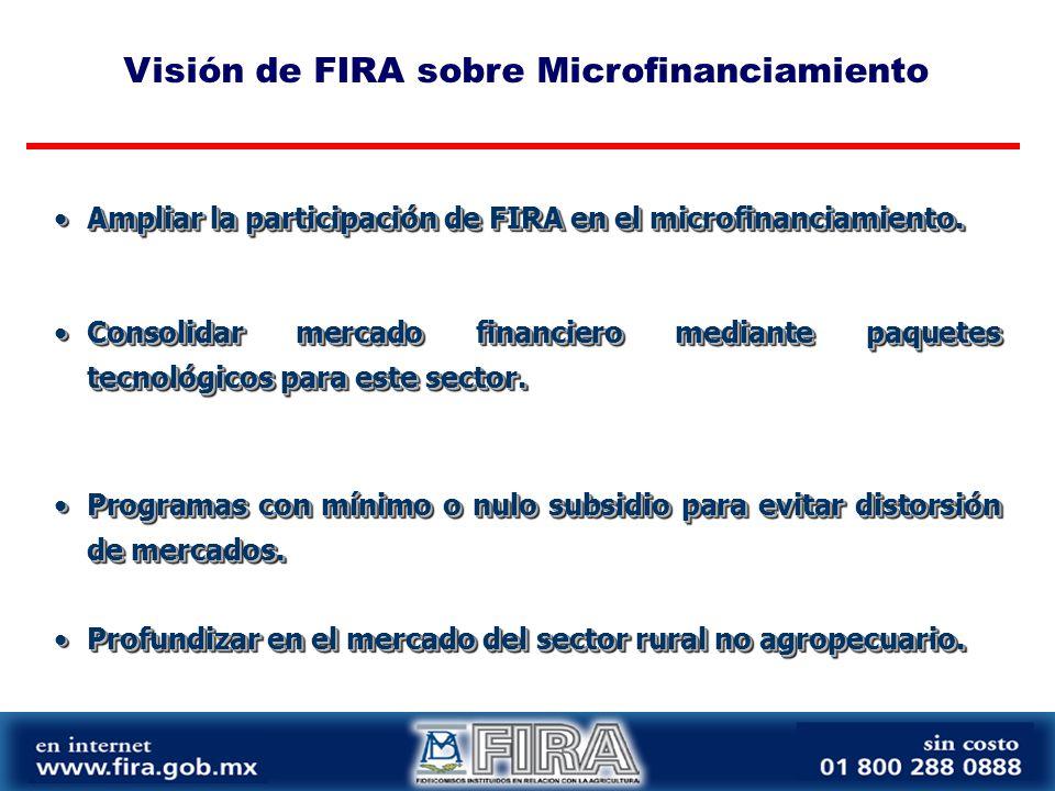 Visión de FIRA sobre Microfinanciamiento Ampliar la participación de FIRA en el microfinanciamiento.Ampliar la participación de FIRA en el microfinanciamiento.
