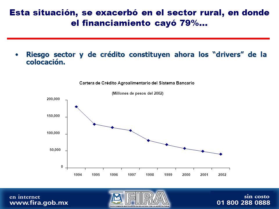 Ante la contracción financiera en al país, y especialmente en el sector rural, FIRA emprendió varias acciones para mitigar estos efectos...