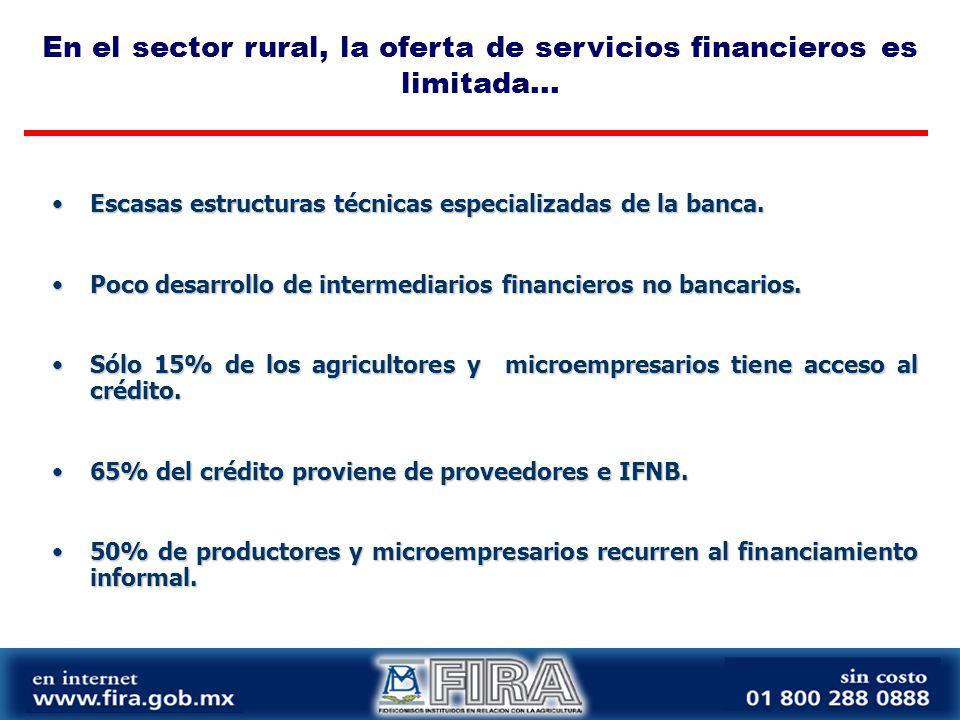 Escasas estructuras técnicas especializadas de la banca.Escasas estructuras técnicas especializadas de la banca.