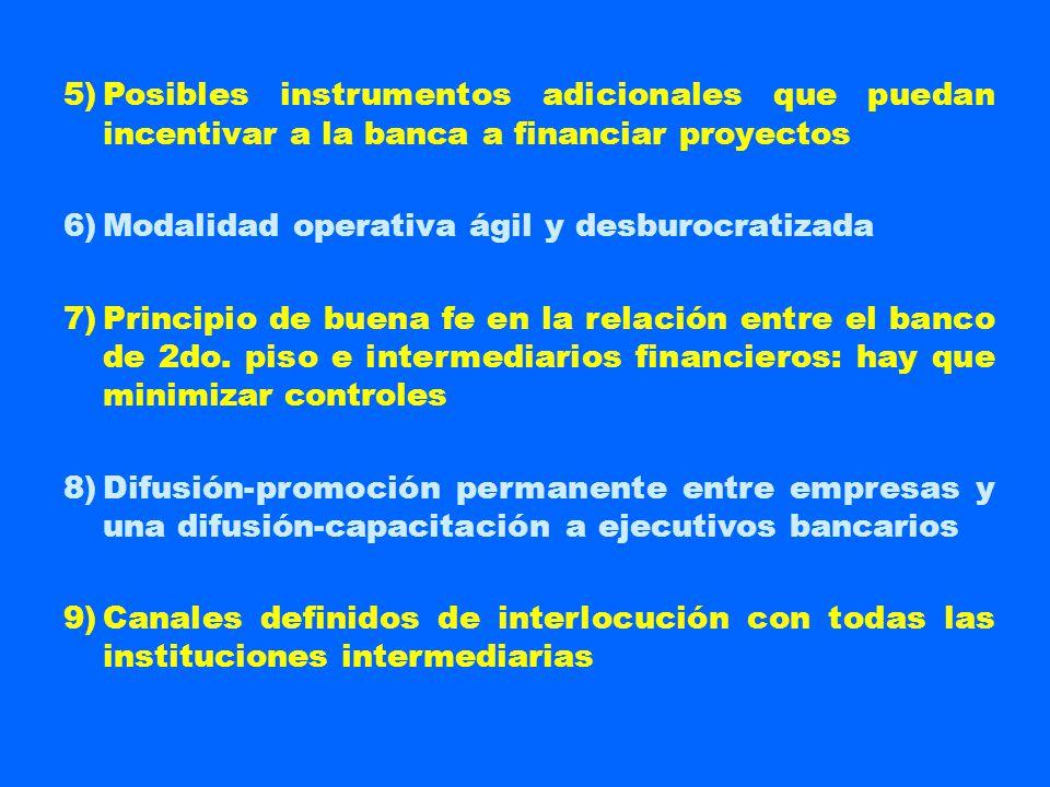 5)Posibles instrumentos adicionales que puedan incentivar a la banca a financiar proyectos 6)Modalidad operativa ágil y desburocratizada 7)Principio d