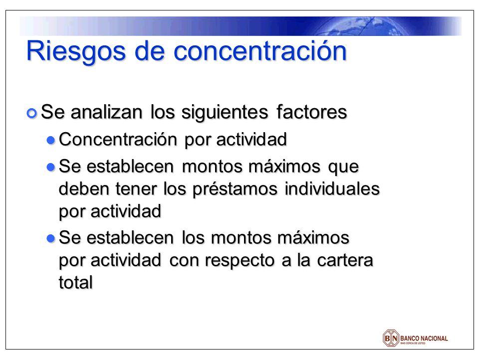 Riesgos de concentración Se analizan los siguientes factores Se analizan los siguientes factores Concentración por actividad Concentración por activid