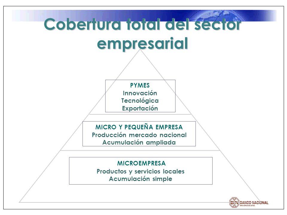 BN DESARROLLO Dependencia del Banco Nacional orientada a ofrecer servicios financieros a sectores no atendidos prioritariamente por la Banca Tradicional ( profundidad ).