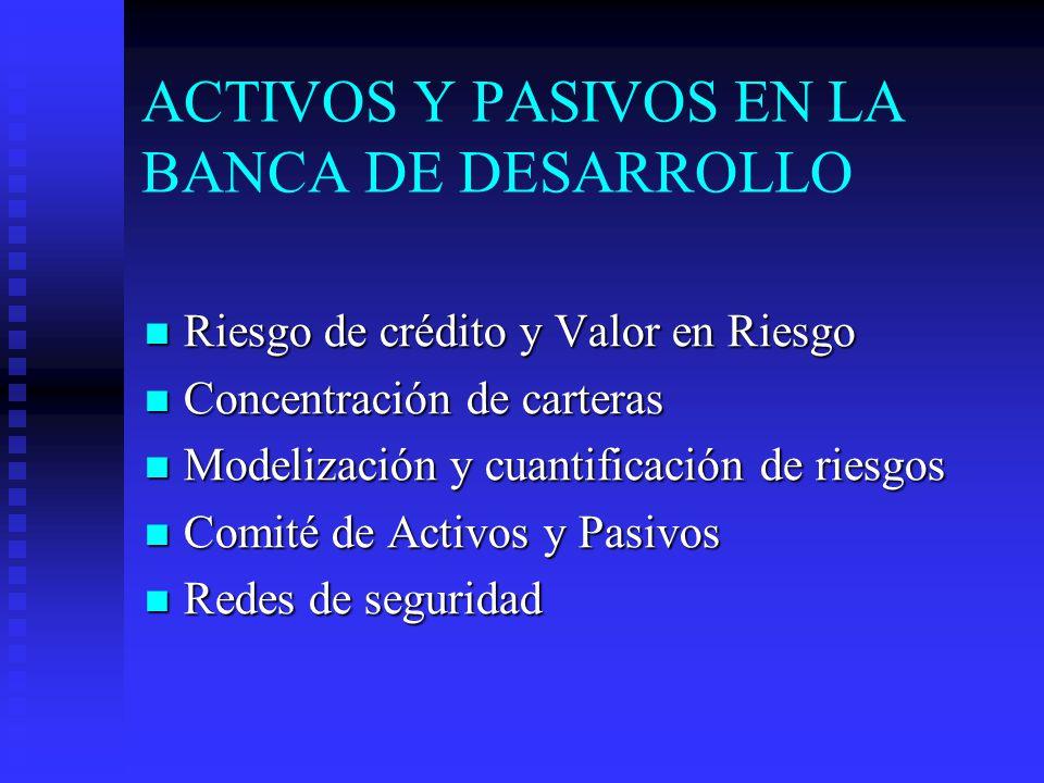 ACTIVOS Y PASIVOS EN LA BANCA DE DESARROLLO Riesgo de crédito y Valor en Riesgo Riesgo de crédito y Valor en Riesgo Concentración de carteras Concentración de carteras Modelización y cuantificación de riesgos Modelización y cuantificación de riesgos Comité de Activos y Pasivos Comité de Activos y Pasivos Redes de seguridad Redes de seguridad