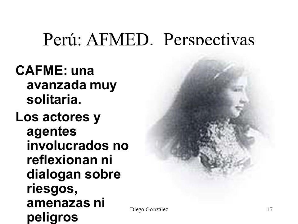 Diego González17 Perú: AFMED. Perspectivas CAFME: una avanzada muy solitaria. Los actores y agentes involucrados no reflexionan ni dialogan sobre ries