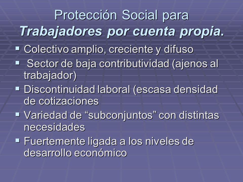 Protección Social para Trabajadores por cuenta propia.