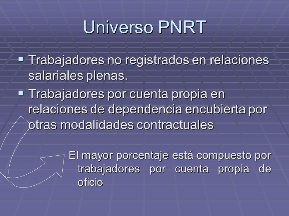Universo PNRT El mayor porcentaje está compuesto por trabajadores por cuenta propia de oficio Trabajadores no registrados en relaciones salariales plenas.