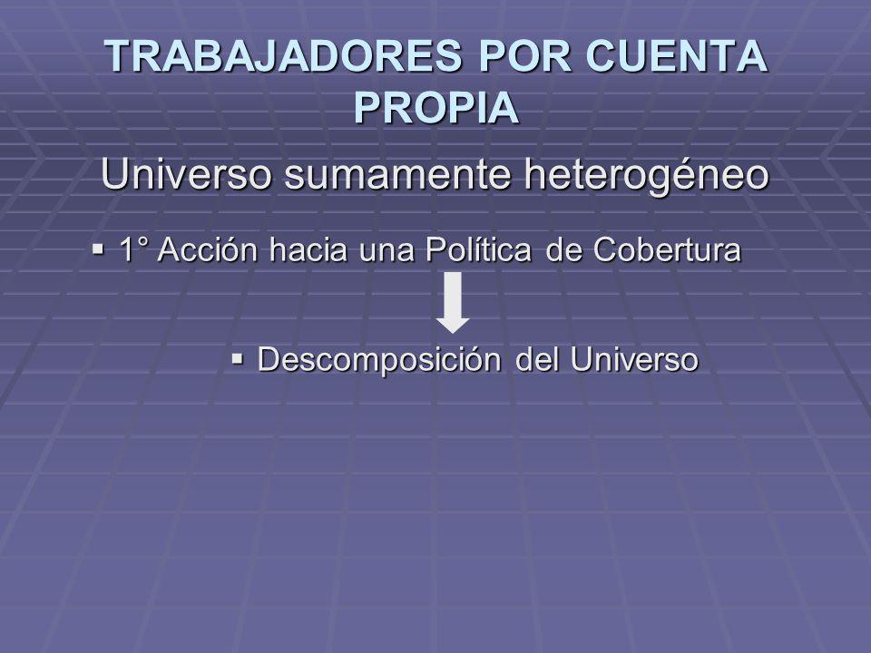 TRABAJADORES POR CUENTA PROPIA Universo sumamente heterogéneo 1° Acción hacia una Política de Cobertura 1° Acción hacia una Política de Cobertura Descomposición del Universo Descomposición del Universo