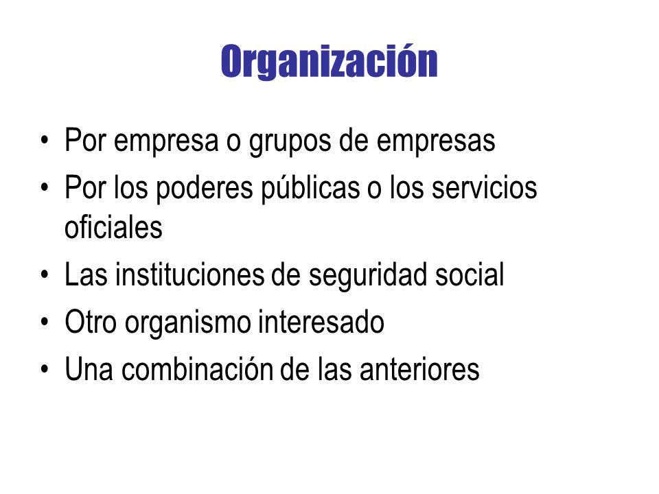 Organización Por empresa o grupos de empresas Por los poderes públicas o los servicios oficiales Las instituciones de seguridad social Otro organismo