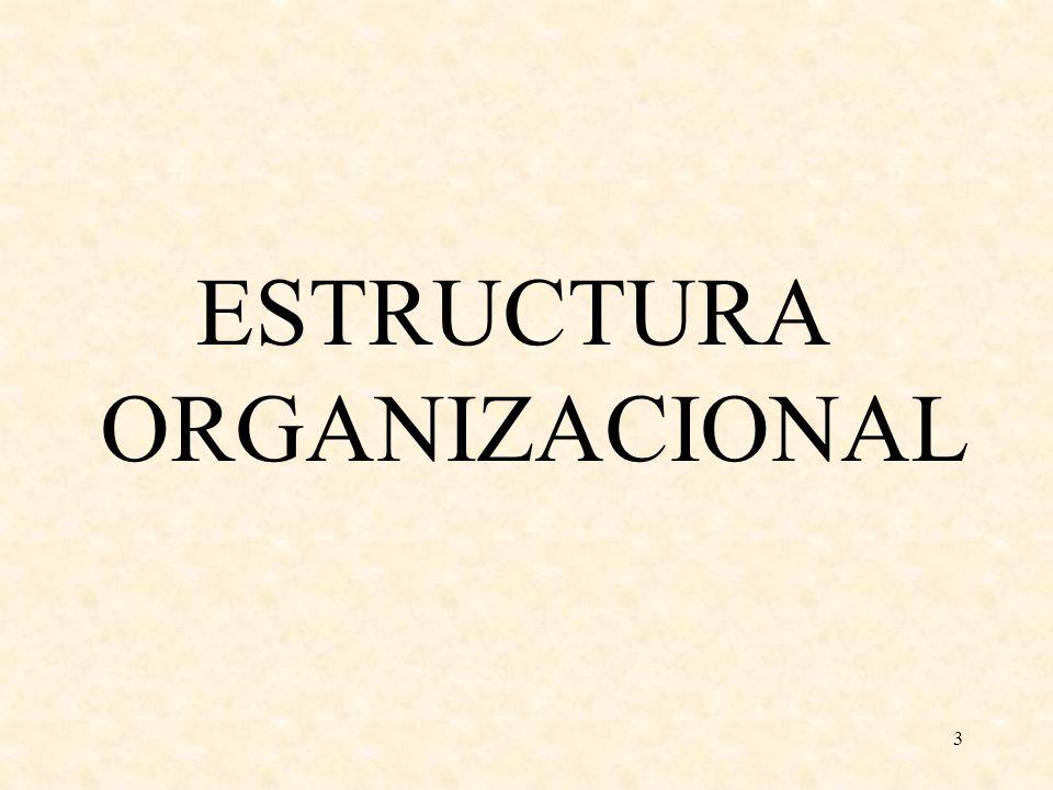 3 ESTRUCTURA ORGANIZACIONAL
