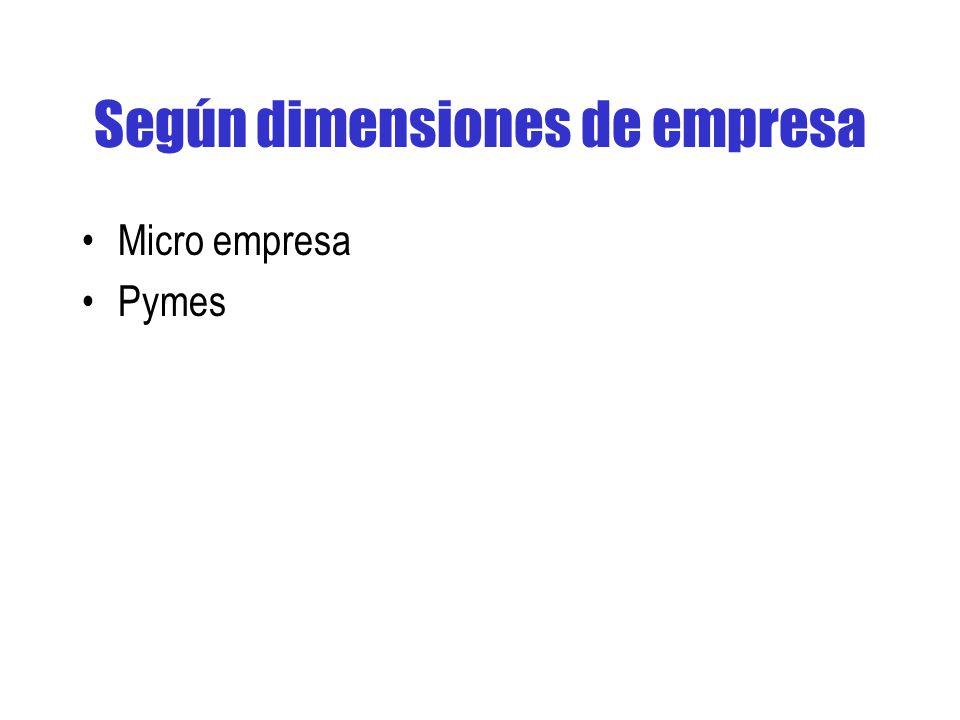 Según dimensiones de empresa Micro empresa Pymes