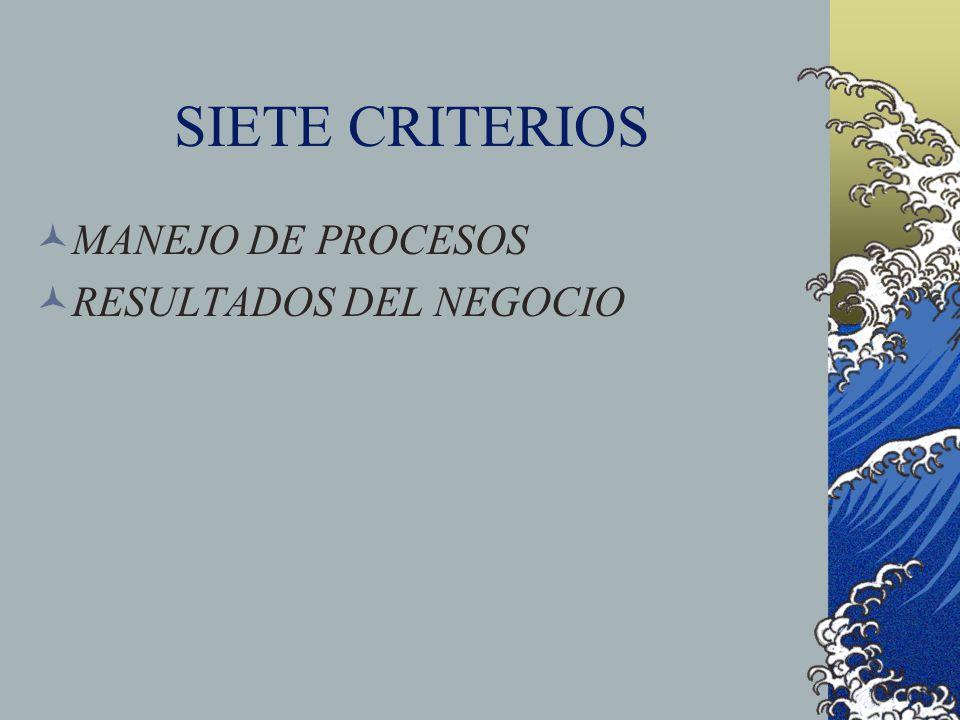 SIETE CRITERIOS MANEJO DE PROCESOS RESULTADOS DEL NEGOCIO