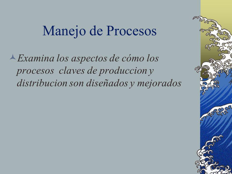 Manejo de Procesos Examina los aspectos de cómo los procesos claves de produccion y distribucion son diseñados y mejorados