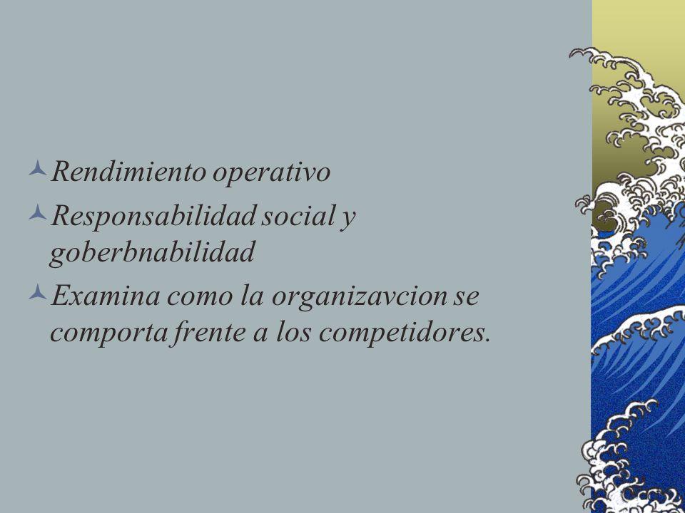 Rendimiento operativo Responsabilidad social y goberbnabilidad Examina como la organizavcion se comporta frente a los competidores.