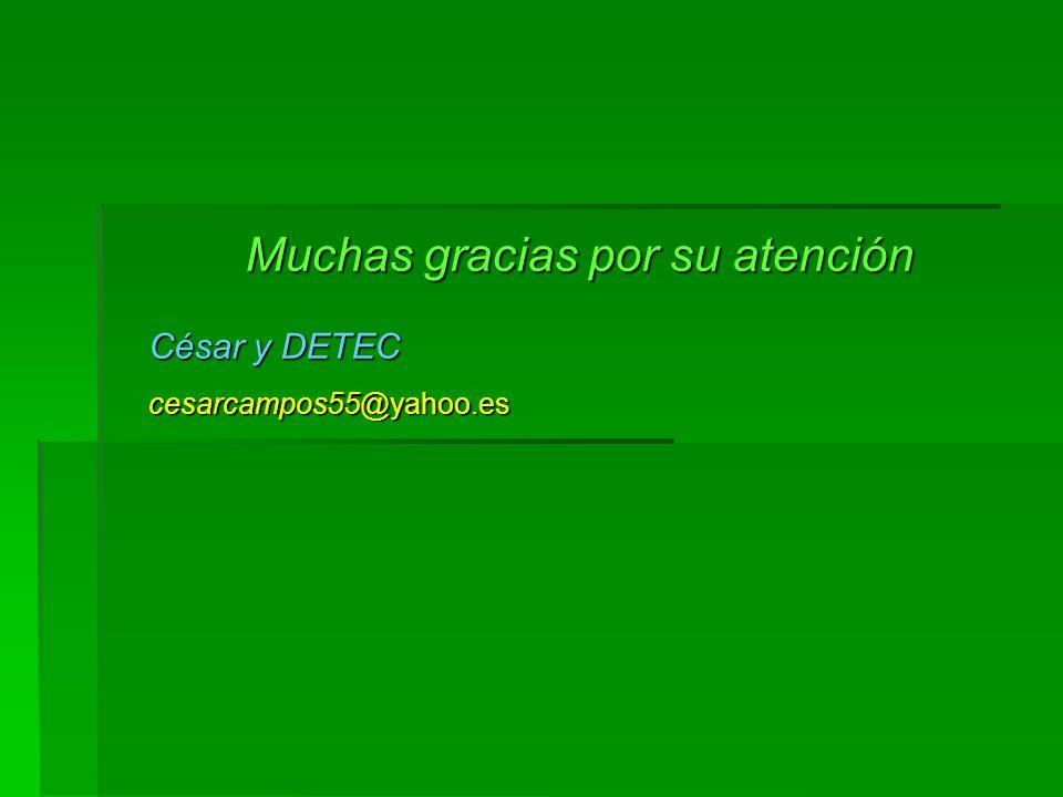Muchas gracias por su atención César y DETEC cesarcampos55@yahoo.es