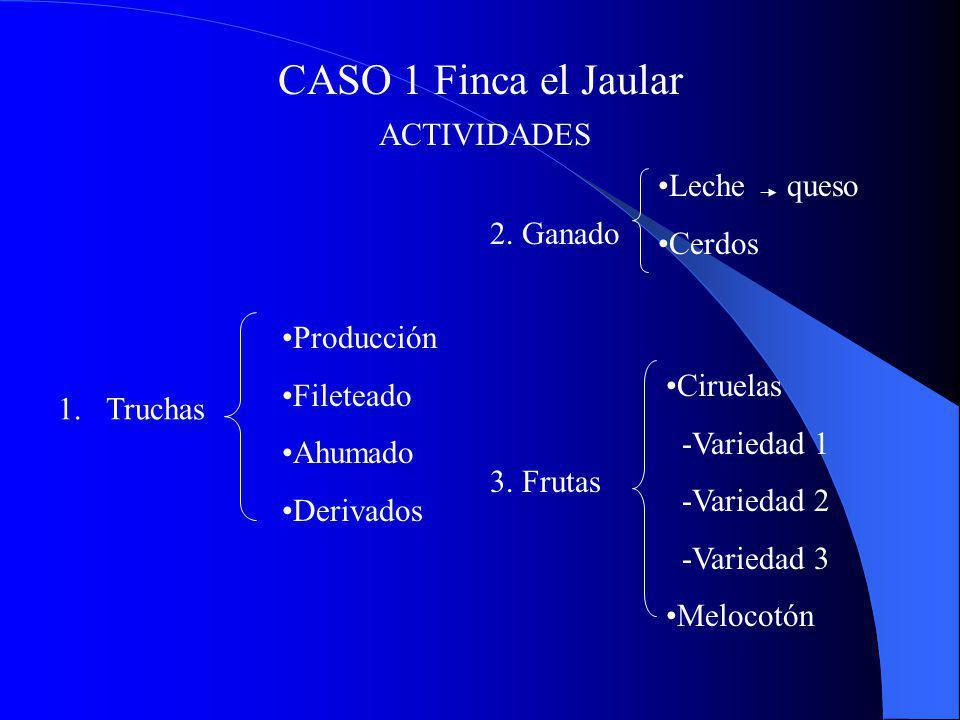 CASO 1 Finca el Jaular ACTIVIDADES 1.Truchas Producción Fileteado Ahumado Derivados 2. Ganado Leche queso Cerdos Ciruelas -Variedad 1 -Variedad 2 -Var