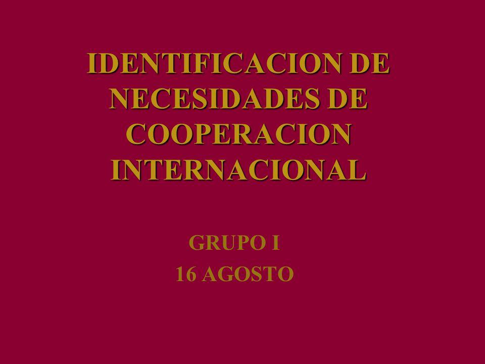 IDENTIFICACION DE NECESIDADES DE COOPERACION INTERNACIONAL GRUPO I 16 AGOSTO