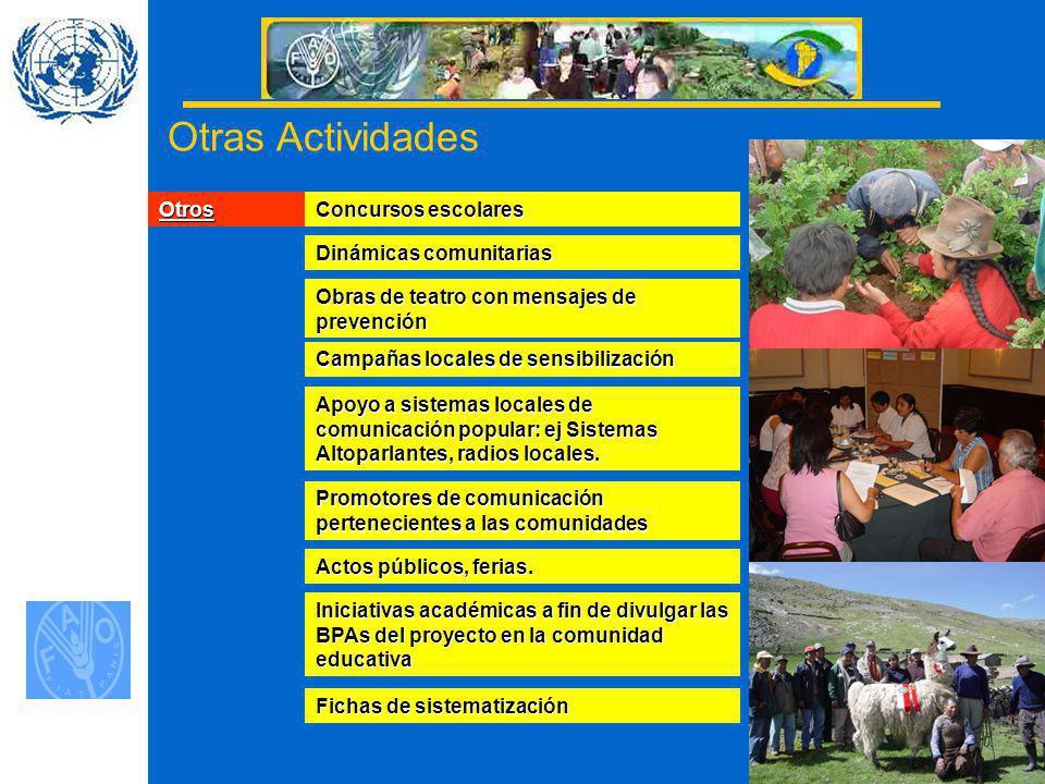 16 Otras Actividades Otros Concursos escolares Dinámicas comunitarias Obras de teatro con mensajes de prevención Campañas locales de sensibilización Apoyo a sistemas locales de comunicación popular: ej Sistemas Altoparlantes, radios locales.