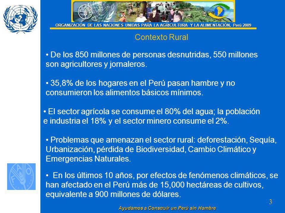 3 Ayudamos a Construir un Perú sin Hambre ORGANIZACIÓN DE LAS NACIONES UNIDAS PARA LA AGRICULTURA Y LA ALIMENTACIÓN, Perú 2009 Contexto Rural De los 850 millones de personas desnutridas, 550 millones son agricultores y jornaleros.