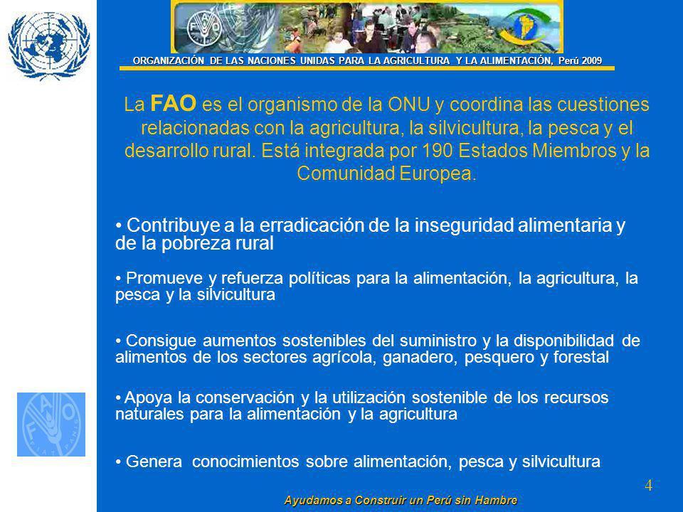 4 La FAO es el organismo de la ONU y coordina las cuestiones relacionadas con la agricultura, la silvicultura, la pesca y el desarrollo rural.