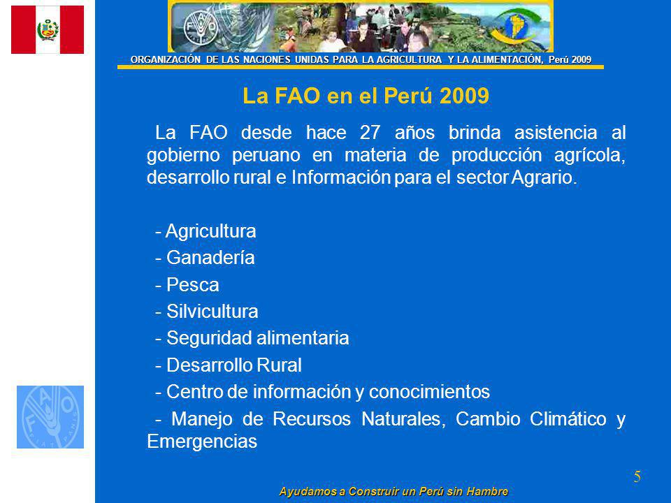 5 Ayudamos a Construir un Perú sin Hambre La FAO desde hace 27 años brinda asistencia al gobierno peruano en materia de producción agrícola, desarrollo rural e Información para el sector Agrario.