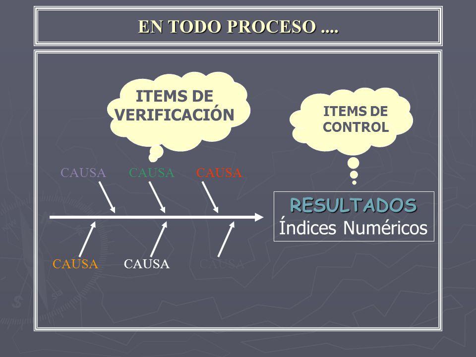 EN TODO PROCESO.... CAUSA RESULTADOS Índices Numéricos ITEMS DE CONTROL ITEMS DE VERIFICACIÓN