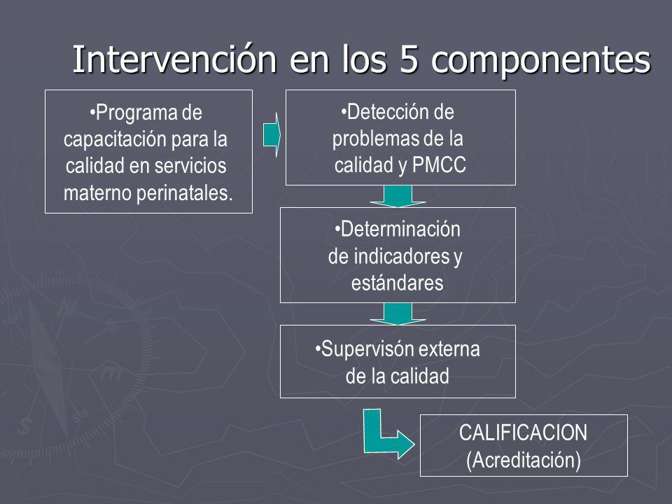 Intervención en los 5 componentes Programa de capacitación para la calidad en servicios materno perinatales. Detección de problemas de la calidad y PM