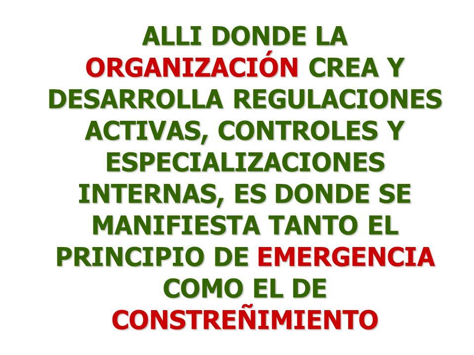 ALLI DONDE LA ORGANIZACIÓN CREA Y DESARROLLA REGULACIONES ACTIVAS, CONTROLES Y ESPECIALIZACIONES INTERNAS, ES DONDE SE MANIFIESTA TANTO EL PRINCIPIO D