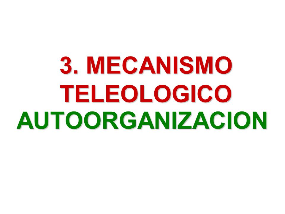 3. MECANISMO TELEOLOGICO AUTOORGANIZACION