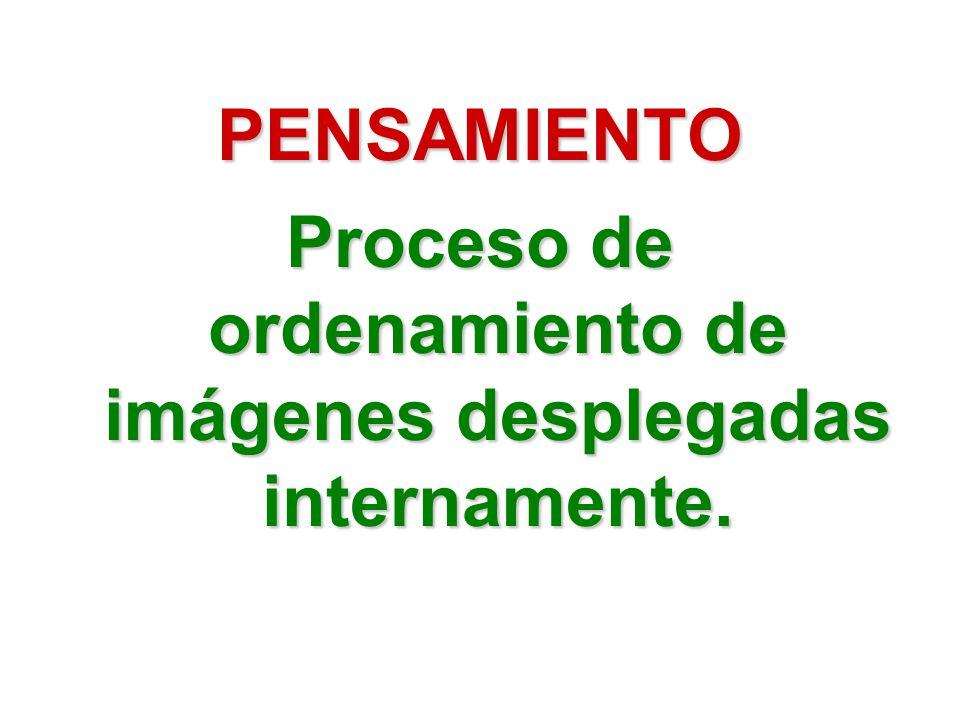 PENSAMIENTO Proceso de ordenamiento de imágenes desplegadas internamente.