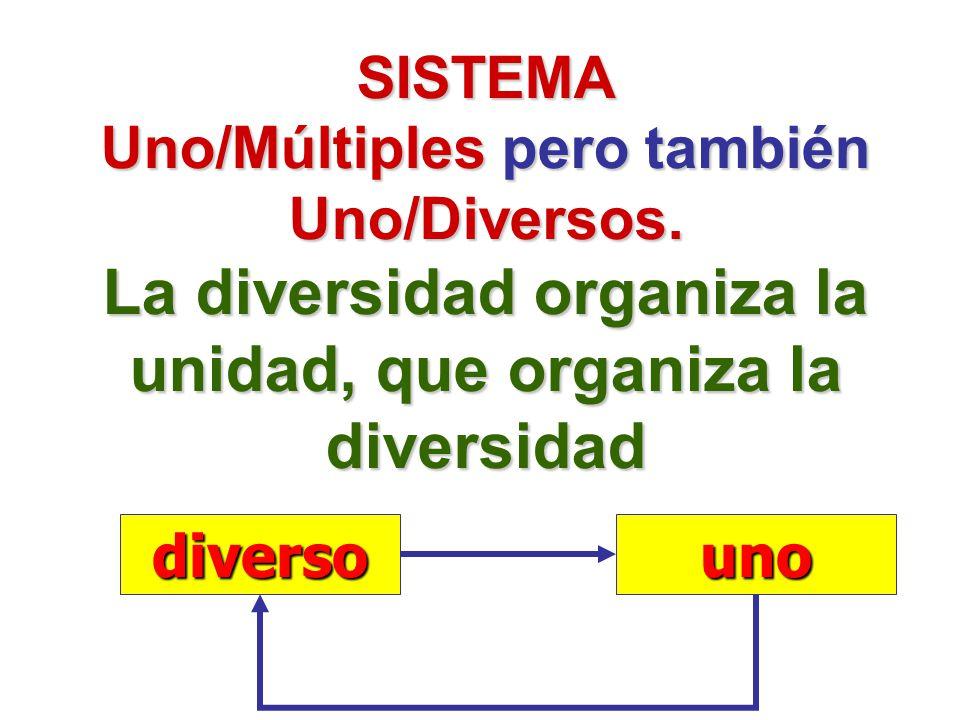 SISTEMA Uno/Múltiples pero también Uno/Diversos. La diversidad organiza la unidad, que organiza la diversidad diversouno