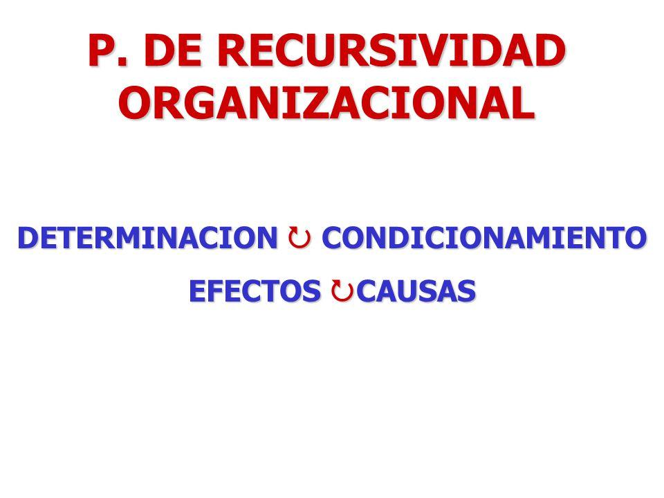 P. DE RECURSIVIDAD ORGANIZACIONAL DETERMINACION CONDICIONAMIENTO EFECTOS CAUSAS