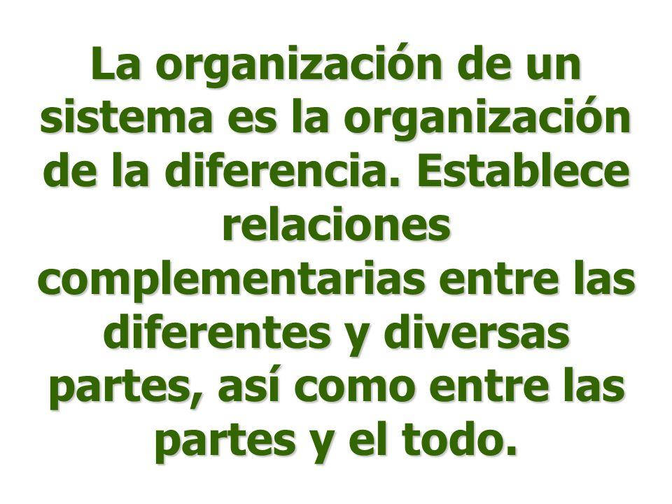 La organización de un sistema es la organización de la diferencia. Establece relaciones complementarias entre las diferentes y diversas partes, así co