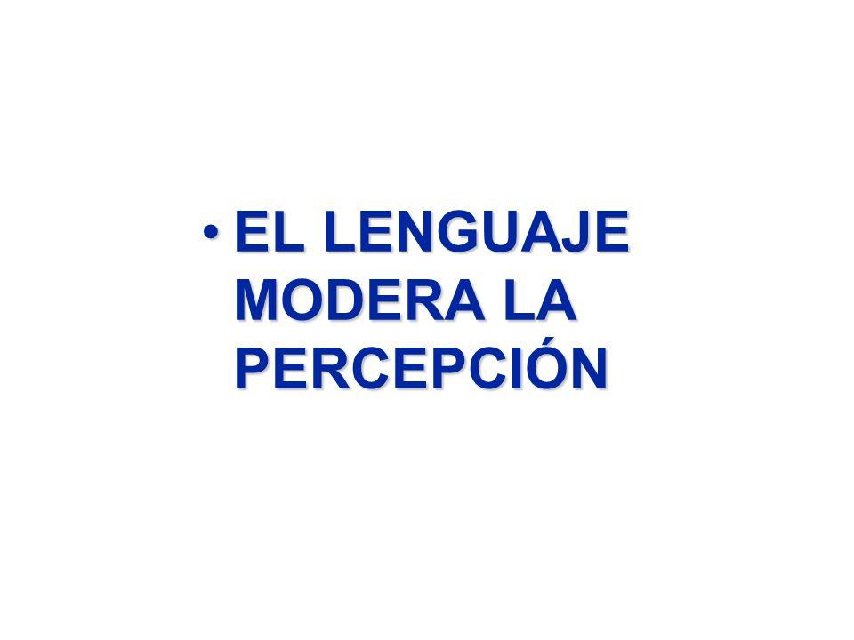 EL LENGUAJE MODERA LA PERCEPCIÓNEL LENGUAJE MODERA LA PERCEPCIÓN