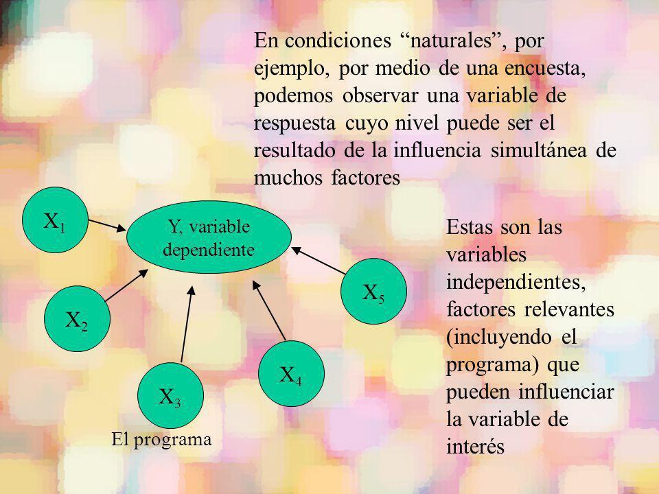 Y, variable dependiente X2X2 X1X1 X5X5 X4X4 X3X3 Estas son las variables independientes, factores relevantes (incluyendo el programa) que pueden influ