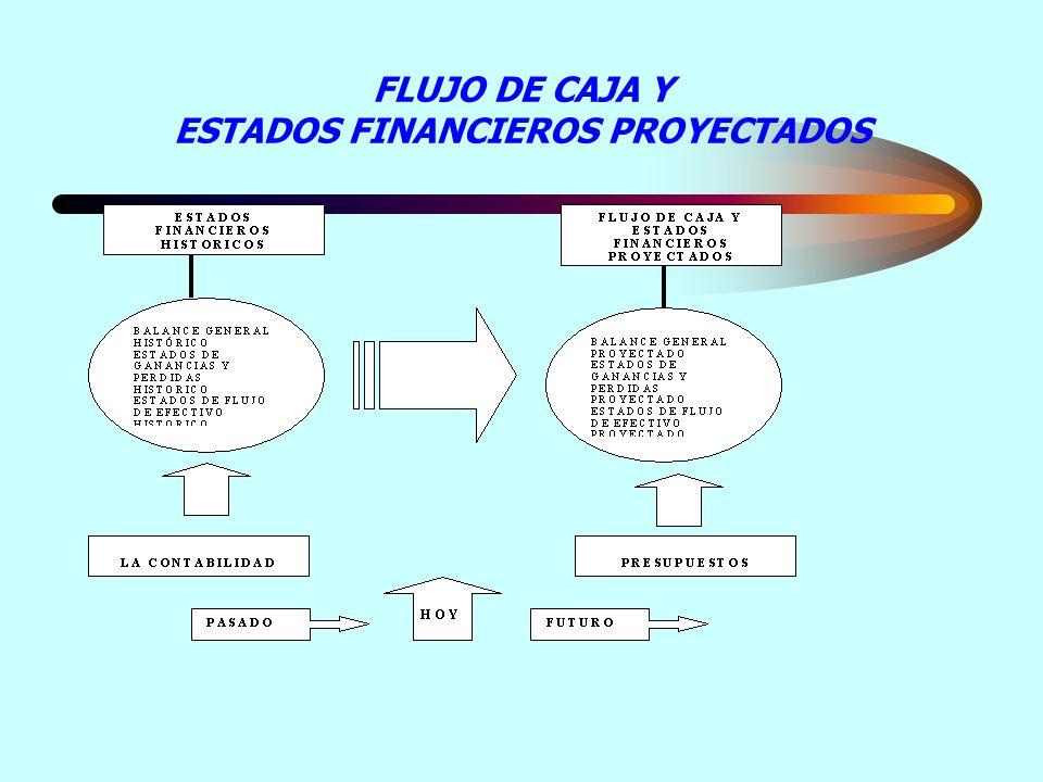 FLUJO DE CAJA Y ESTADOS FINANCIEROS PROYECTADOS