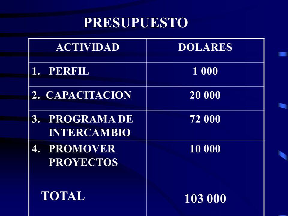 PRESUPUESTO ACTIVIDADDOLARES 1.PERFIL1 000 2. CAPACITACION20 000 3.