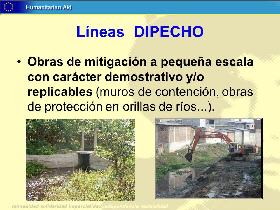 Líneas DIPECHO Obras de mitigación a pequeña escala con carácter demostrativo y/o replicables (muros de contención, obras de protección en orillas de