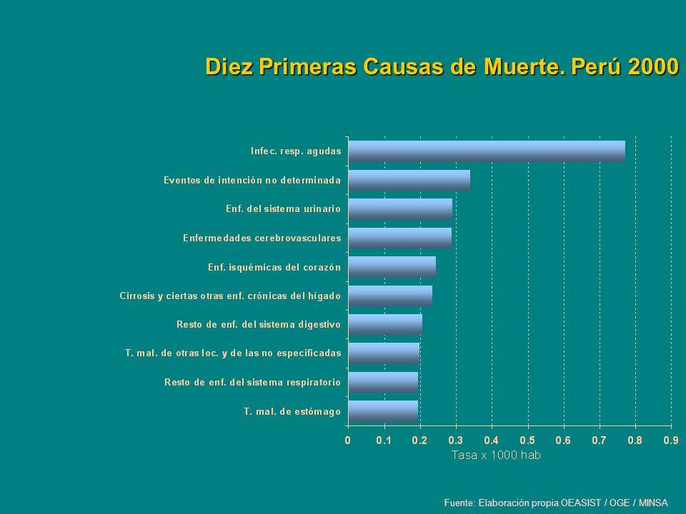 Diez Primeras Causas de Muerte. Perú 2000 Fuente: Elaboración propia OEASIST / OGE / MINSA