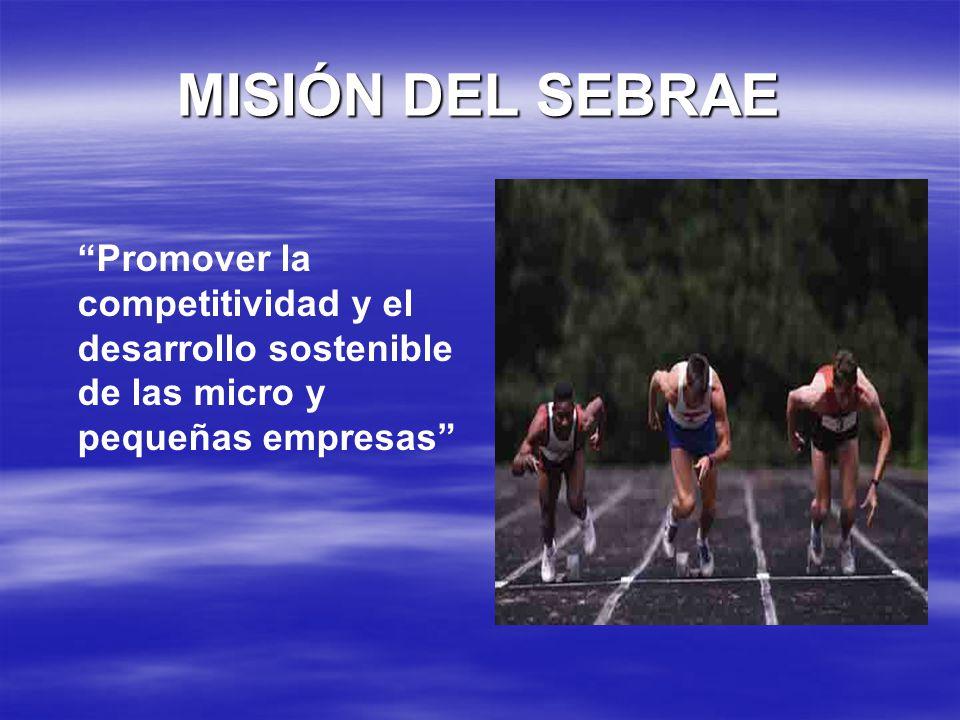 MISIÓN DEL SEBRAE Promover la competitividad y el desarrollo sostenible de las micro y pequeñas empresas