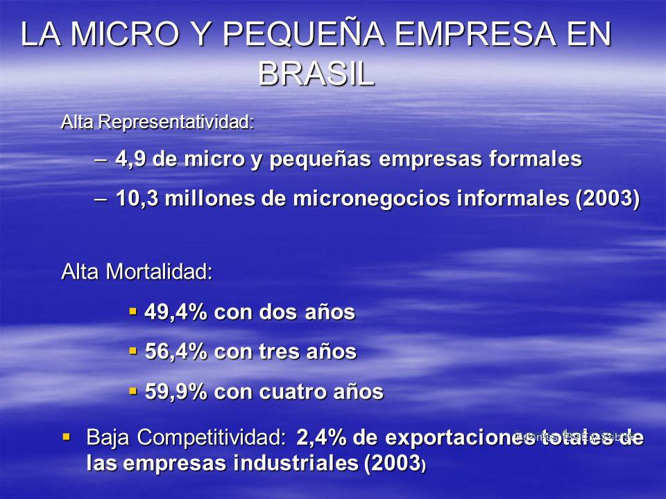 LA MICRO Y PEQUEÑA EMPRESA EN BRASIL Alta Representatividad: –4,9 de micro y pequeñas empresas formales –10,3 millones de micronegocios informales (20