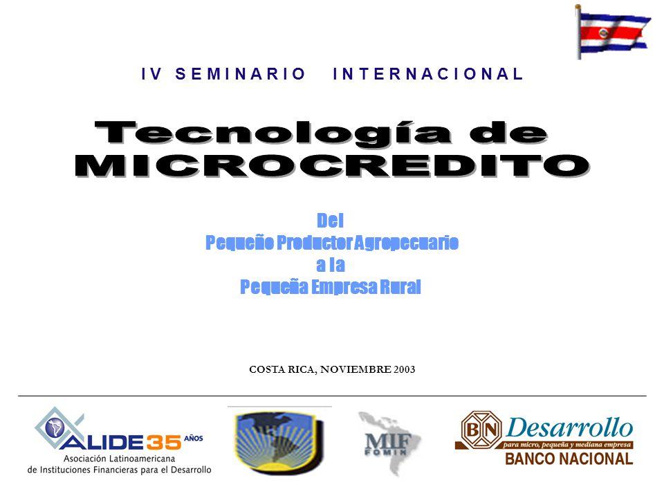 I V S E M I N A R I O I N T E R N A C I O N A L COSTA RICA, NOVIEMBRE 2003 Del Pequeño Productor Agropecuario a la Pequeña Empresa Rural