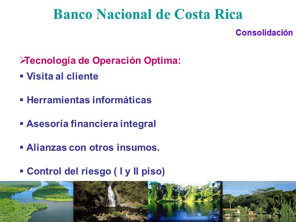 Banco Nacional de Costa RicaConsolidación Tecnología de Operación Optima: Visita al cliente Herramientas informáticas Asesoría financiera integral Ali