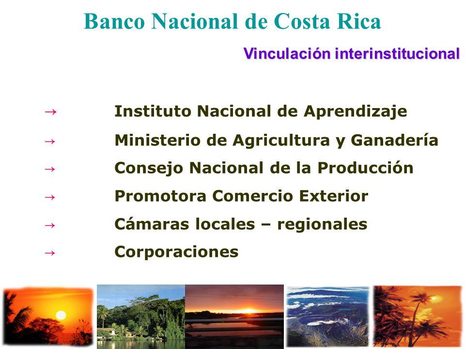 Banco Nacional de Costa Rica Vinculación interinstitucional Instituto Nacional de Aprendizaje Ministerio de Agricultura y Ganadería Consejo Nacional d