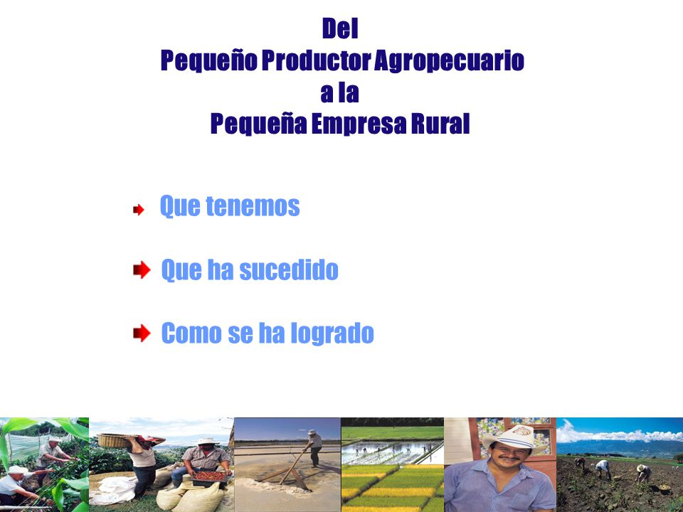 Del Pequeño Productor Agropecuario a la Pequeña Empresa Rural Que tenemos Que ha sucedido Como se ha logrado