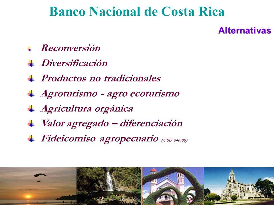 Banco Nacional de Costa RicaAlternativas Reconversión Diversificación Productos no tradicionales Agroturismo - agro ecoturismo Agricultura orgánica Va