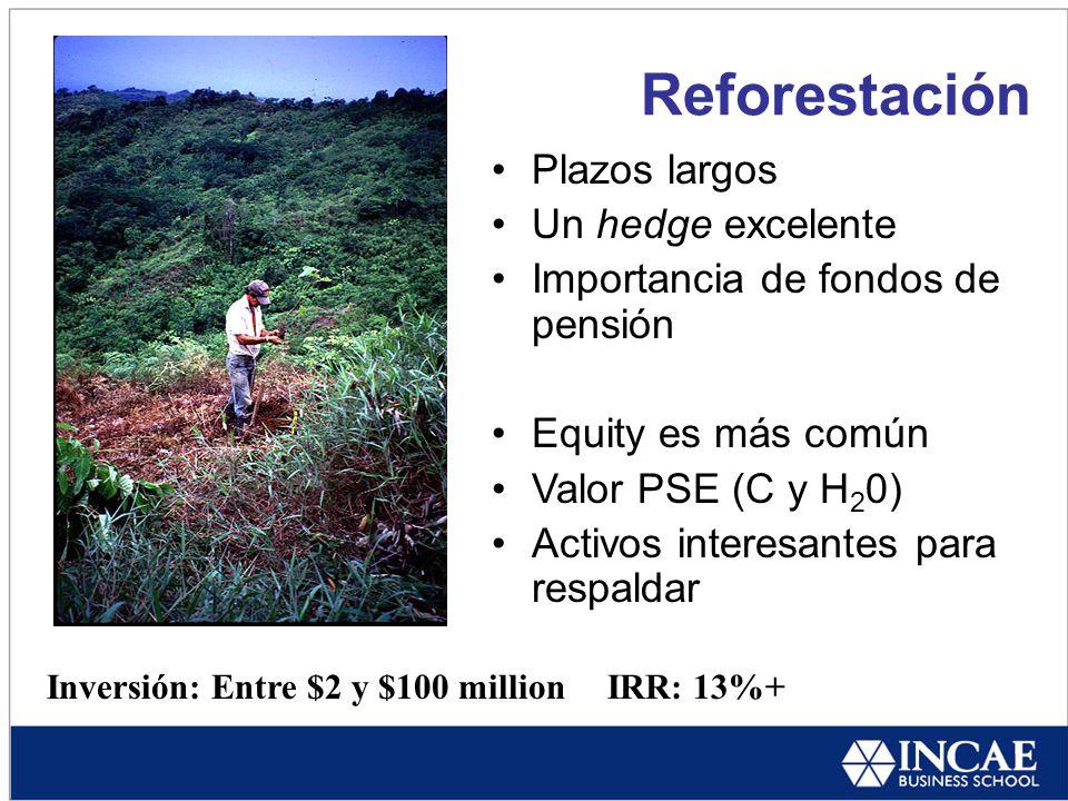 Reforestación Inversión: Entre $2 y $100 millionIRR: 13%+ Plazos largos Un hedge excelente Importancia de fondos de pensión Equity es más común Valor PSE (C y H 2 0) Activos interesantes para respaldar