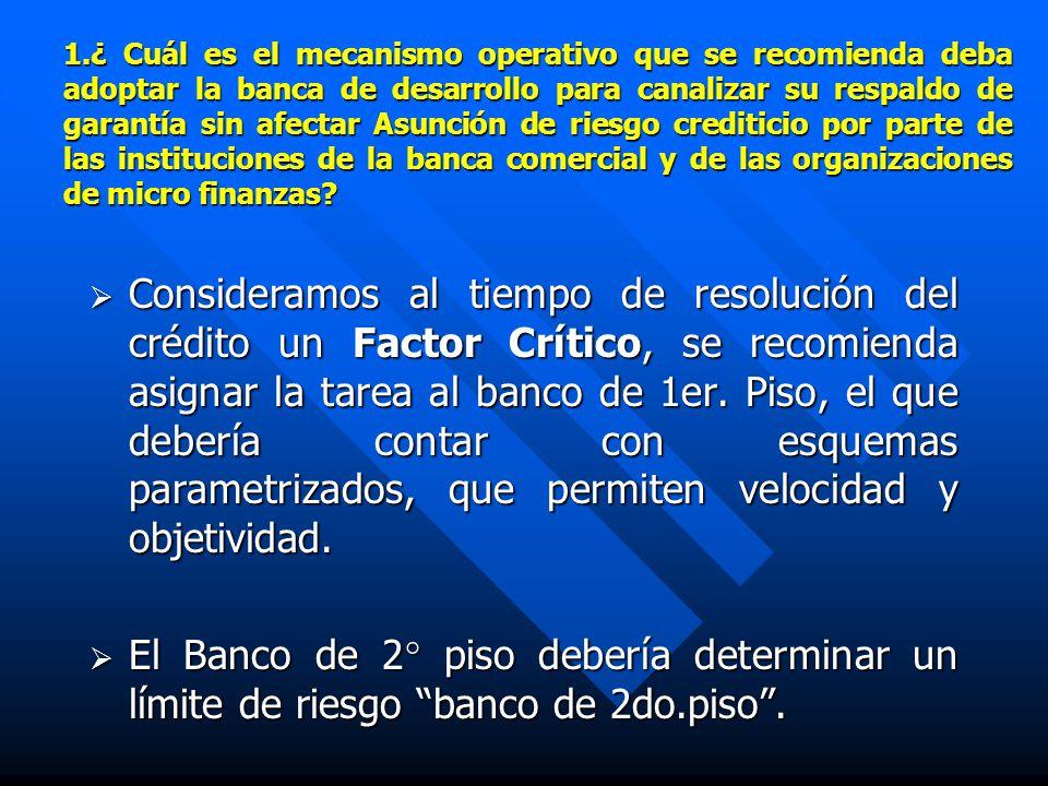1.¿ Cuál es el mecanismo operativo que se recomienda deba adoptar la banca de desarrollo para canalizar su respaldo de garantía sin afectar Asunción de riesgo crediticio por parte de las instituciones de la banca comercial y de las organizaciones de micro finanzas.