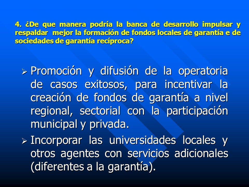 4. ¿De que manera podría la banca de desarrollo impulsar y respaldar mejor la formación de fondos locales de garantía e de sociedades de garantía recí